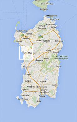 pianta dell'isola di Sardegna